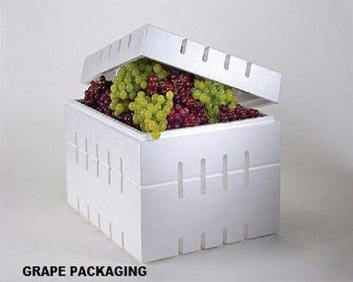 grapes packaging box, thermocol boxes, fruit packaging box