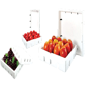 Thermocol Boxes For Fruit Packaging