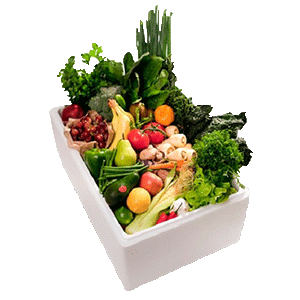 Thermocol-Boxes-For-Vegetable-Packaging