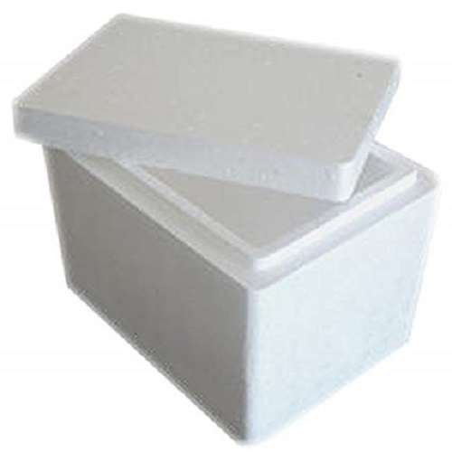 Thermocol food packaging